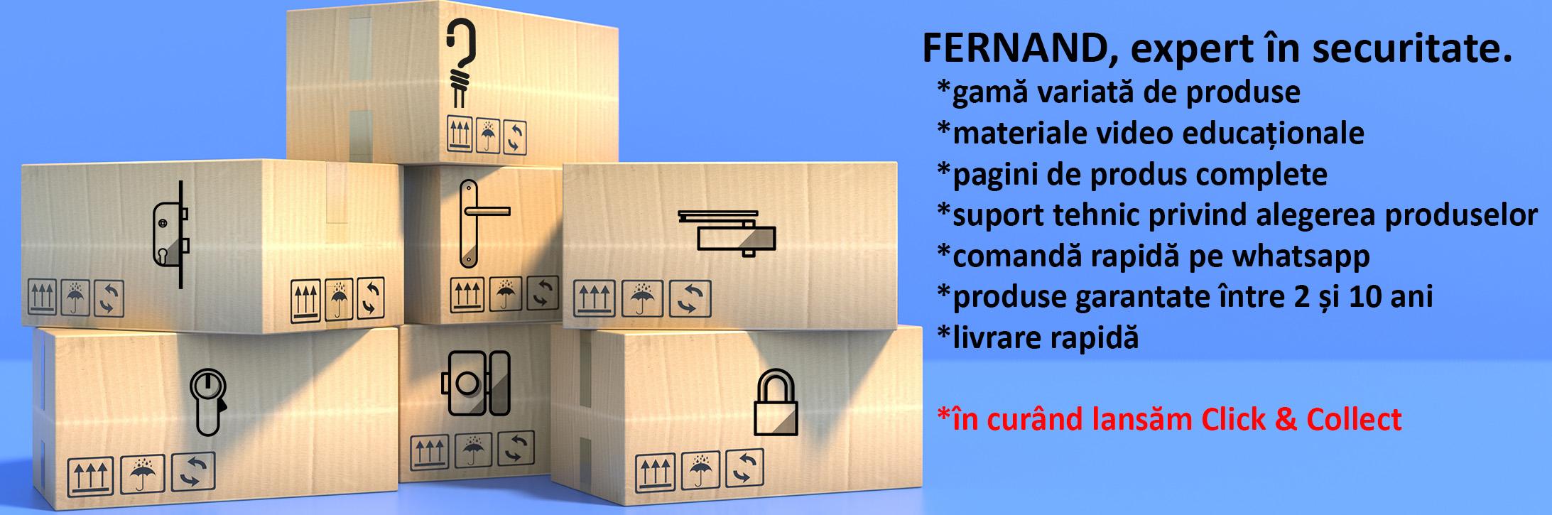 concept fernand